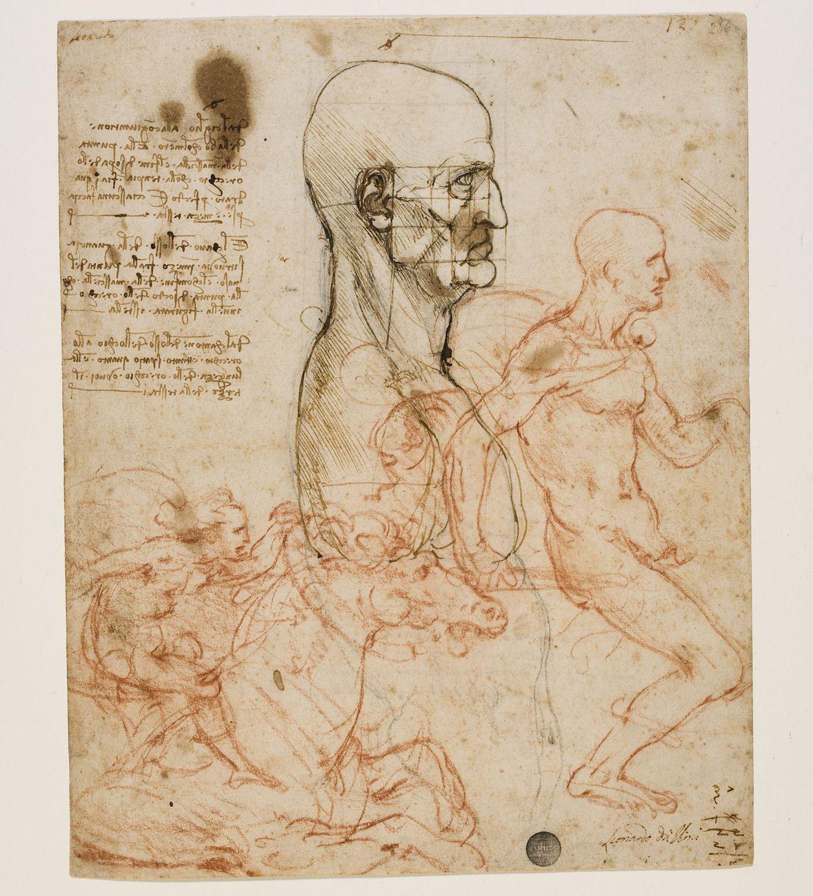 Leonardo da Vinci, Busto d'uomo di profilo con studio di proporzioni, 1489 90. Venezia, Gallerie dell'Accademia, Gabinetto Disegni e stampe © Archivio fotografico G.A.VE. Photo Matteo De Fina