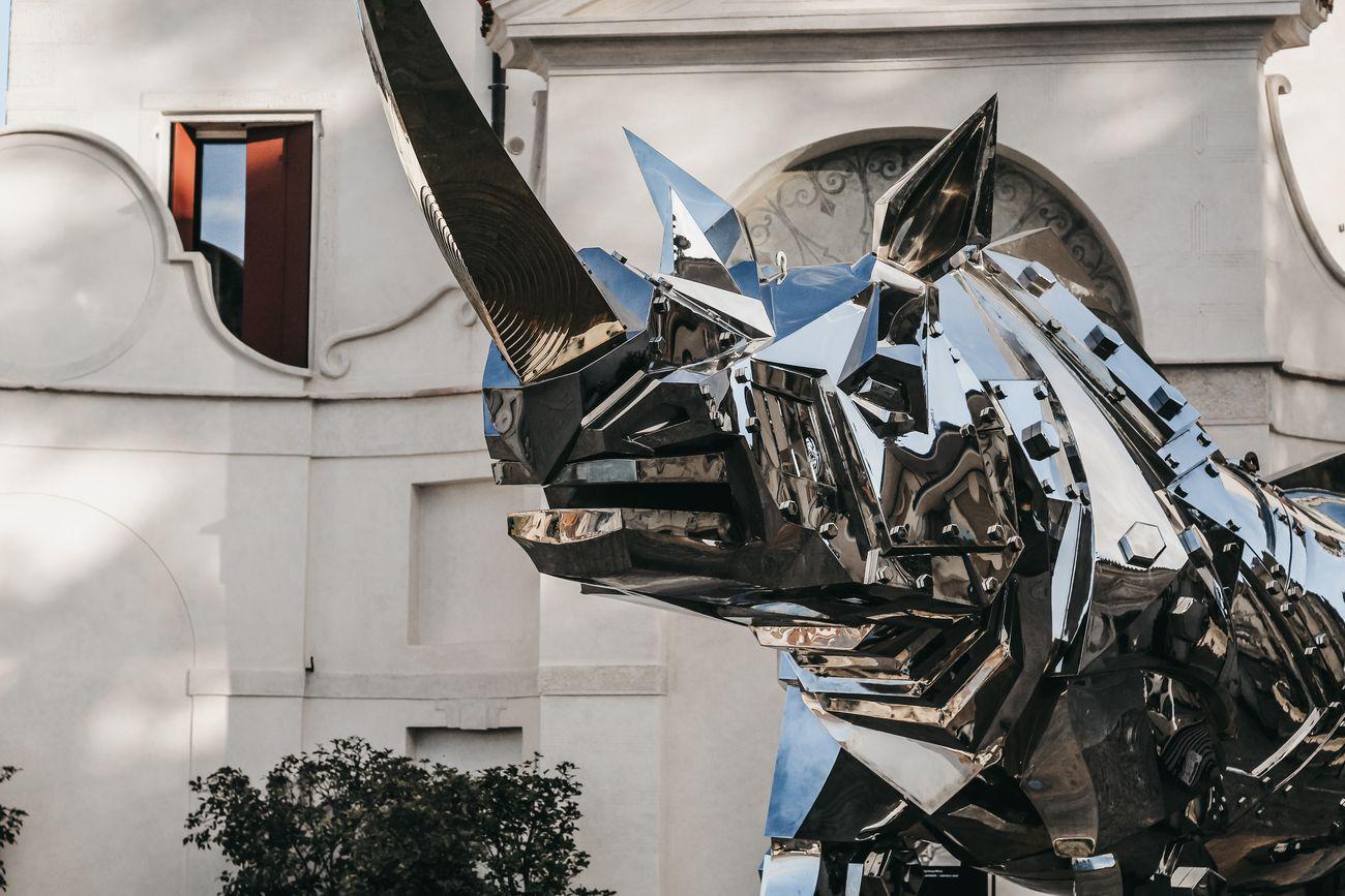 Li Jen Shih, King Kong Rhino, 2011, particolare, acciaio inox