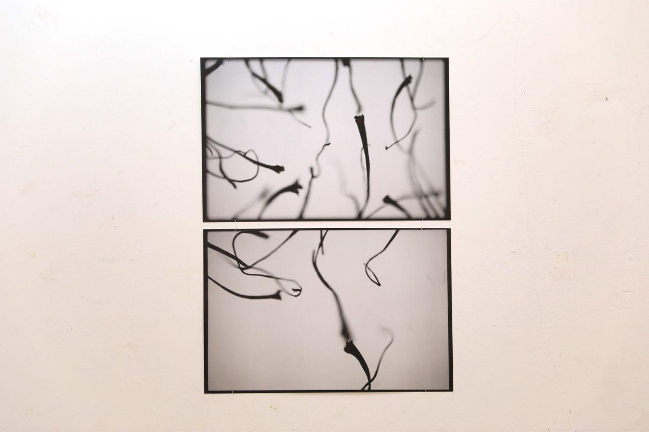 Michele Tiberio, Studio per serie fotografica Za'faran, impressione di un ricordo, 2019, stampa fotografica, 2 foto 35x50 cm, photo credits Carlo Vigni