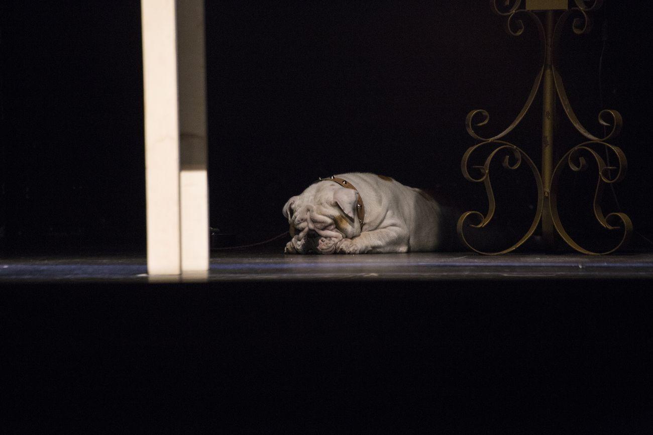Babilonia Teatri, Padre nostro. Photo Francesca Marra