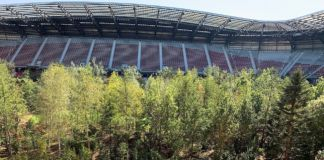 For Forest. Klagenfurt Stadium. Photo Claudia Zanfi