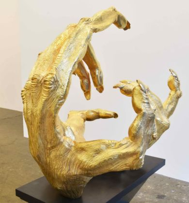 Artwork image credit: Courtesy of Finkelstein Gallery and the artist Golden Gibbon hands, by Lisa Roet