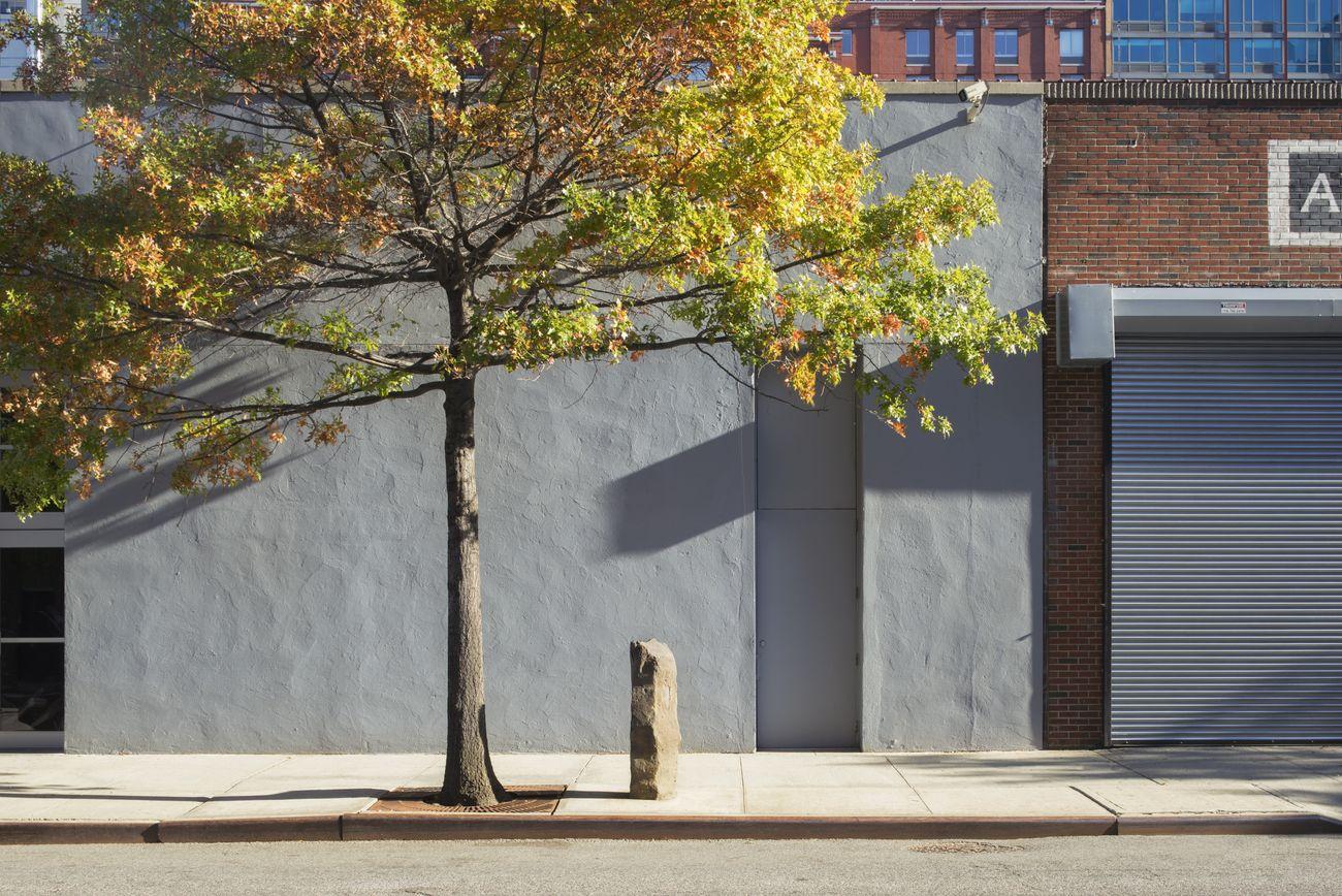Joseph Beuys, 7000 Eichen, 1982-ongoing © Joseph Beuys-Artists Rights Society (ARS), New York. Photo Bill Jacobson Studio, New York. Courtesy Dia Art Foundation, New York