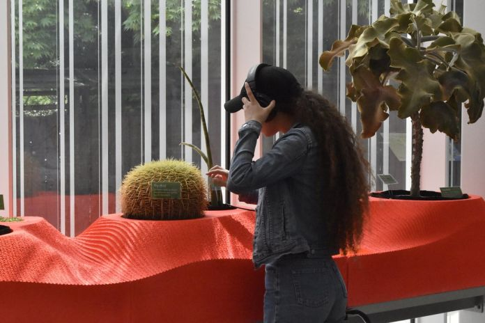 Visitors interact with living sound artworks in the Sonic Succulents installation by Adrienne Adar. Photograph by Elizabeth Peters