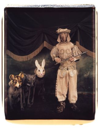 William Wegman, Tamino with Magic Flute, 1996. Proprietà dell'artista © William Wegman