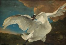 Jan Asselijn, The Threatened Swan, c. 1650. Amsterdam, Rijksmuseum