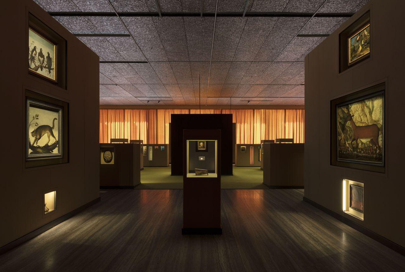 Il sarcofago di Spitzmaus e altri tesori. Exhibition view at Fondazione Prada, Milano 2019. Photo Andrea Rossetti. Courtesy Fondazione Prada