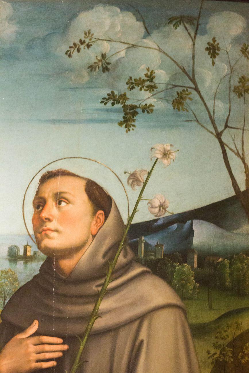 Raffaello e gli amici di Urbino. Galleria Nazionale delle Marche, 2019. Photo Camilla Ferrero