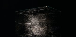 Tomás Saraceno, Hybrid semi-social solitary Instrument HD 74874, 2019. Thyssen-Bornemisza Art Contemporary Collection. Photo courtesy l'artista & Tanya Bonakdar Gallery, New York-Los Angeles