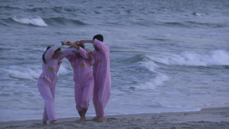 """The Institute of Queer Ecology, """"FORM FOLLOWS FOREPLAY"""", (2019), 3'25''. BOFFO Fire Island Residency"""