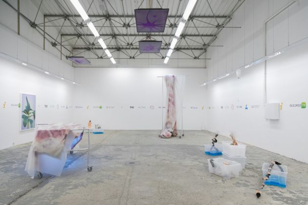 Emir Šehanović, The World was to me a secret which I desired to Divine, 2019, installation view at Eugster __ Belgrade, Belgrado 2019