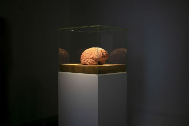 Jan Fabre. The Rhythm of the Brain. Exhibition view at Palazzo Merulana, Roma 2019