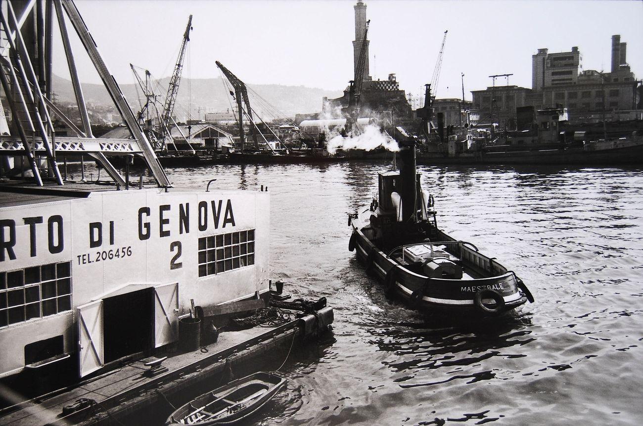 Lisetta Carmi, Porto di Genova, 1964 © Lisetta Carmi. Courtesy of Martini & Ronchetti, Genova