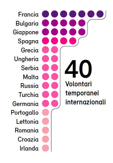 Volontari per Matera 2019. Infografica © Artribune Magazine