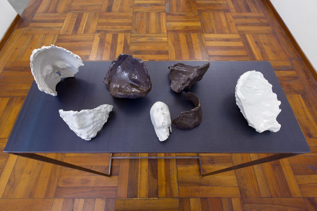 Cosimo Veneziano, Membrana, 2017. Installation view at Galleria Alberto Peola, Torino