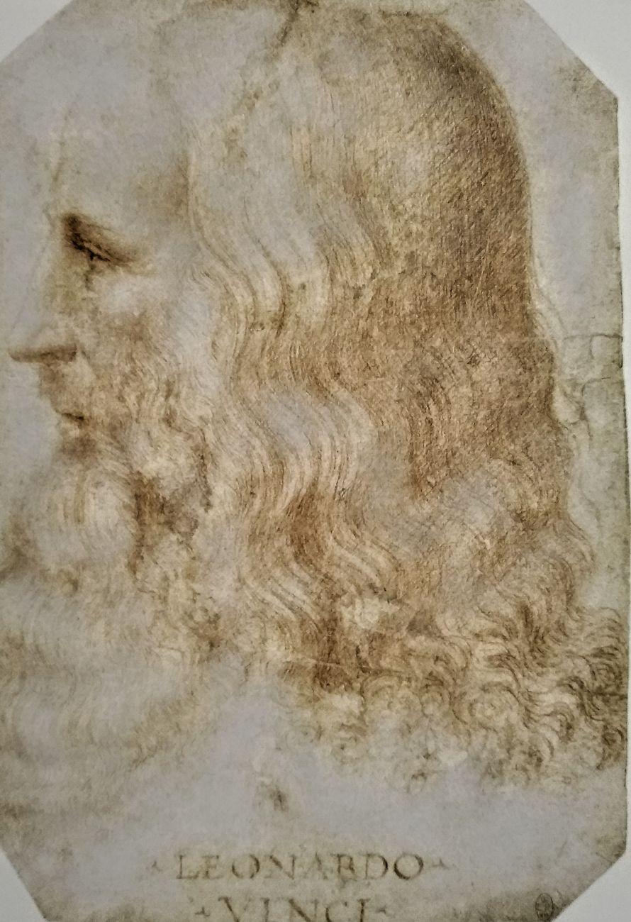 Francesco Melzi, Ritratto di Leonardo da Vinci. The Royal Collection, HM Queen Elizabeth II, Windsor