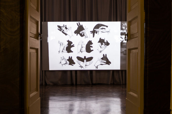 Lina Selander. Diagrams of Transfer. Exhibition view at Galleria Tiziana Di Caro, Napoli 2019. Photo Danilo Donzelli. Courtesy the artist & Galleria Tiziana Di Caro