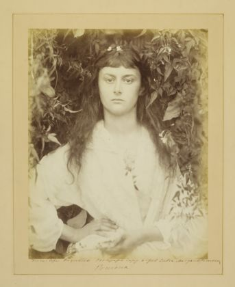Photograph of the 'real' Alice Liddell, by Julia Margaret Cameron, 'Pomona', albumen print, 1872 (c) Victoria and Albert Museum, London