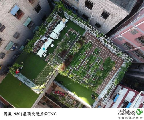 UABB ‒ Urbanism and Architecture Bi City Biennale of Hong Kong and Shenzhen 2019. Green the City Sky – The Nature Conservancy – Shenzhen Conservation Program