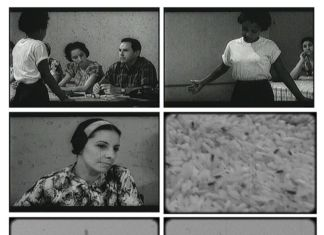 Lázaro Saavedra, El cuervo albino, 2007, video stills. Photo © Annamaria La Mastra