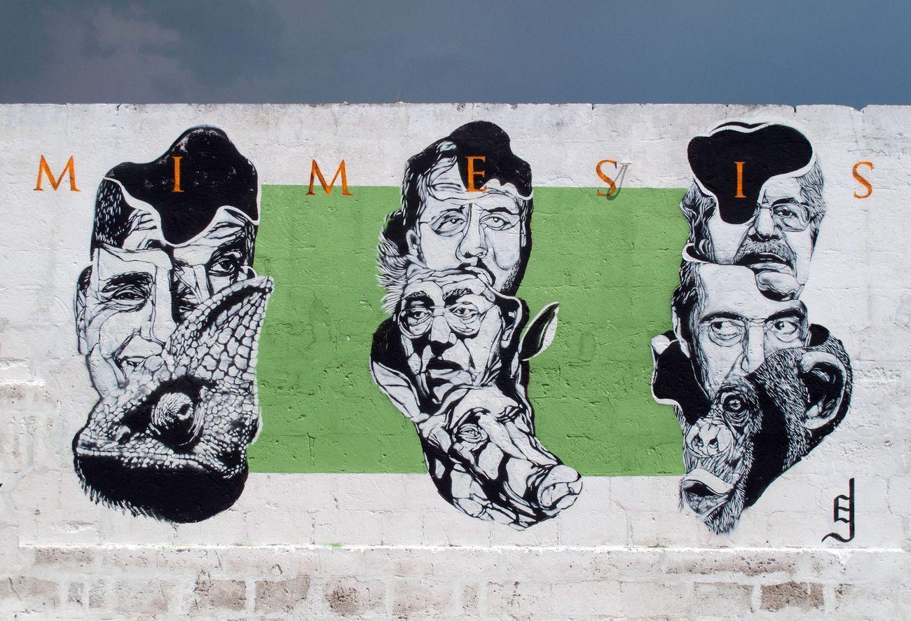 Mimesis, Castellaneta, agosto 2016. Photo dell'artista