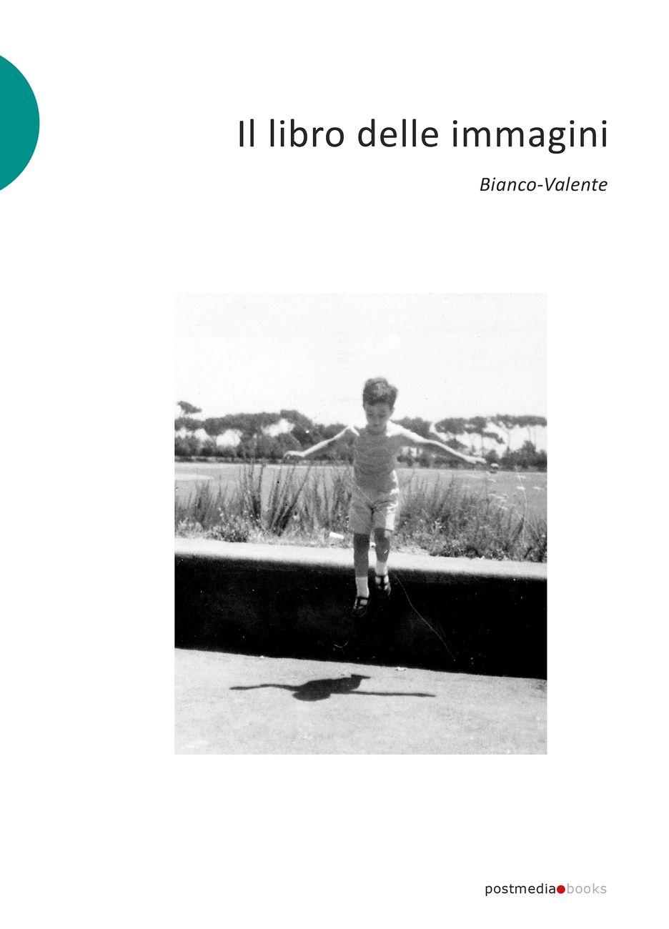 Bianco-Valente - Il libro delle immagini (Postmediabooks, Milano 2020)