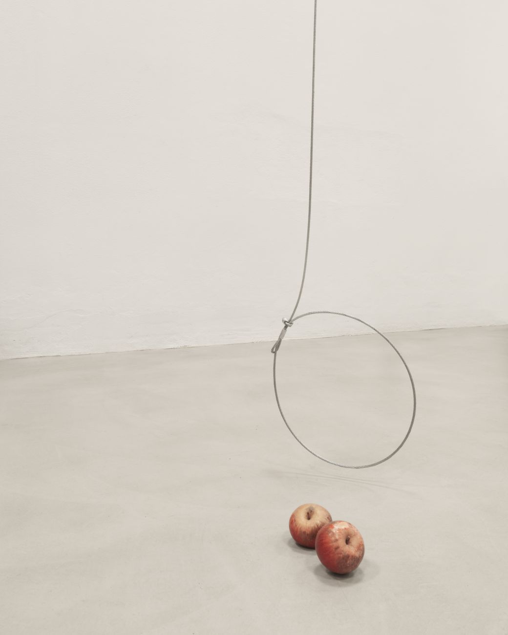 Edoardo Manzoni, Senza Titolo (Fame), 2020, cavo di acciaio e mele. Courtesy the artist and State Of. Photo credits Francesco Spallacci