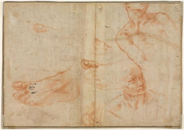 Michelangelo Buonarroti, Figure Studies for the Sistine Ceiling (verso), 1510 11 Red chalk and black chalk or charcoal (recto); The Cleveland Museum of Art
