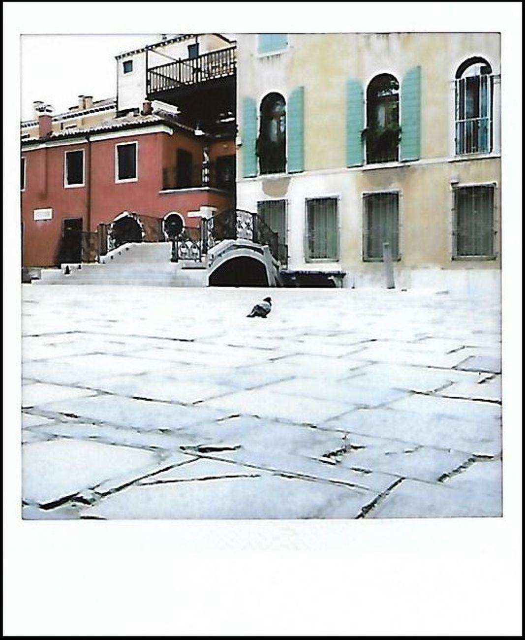 A meno di noi, photo Anna Toscano, Venezia marzo 2020