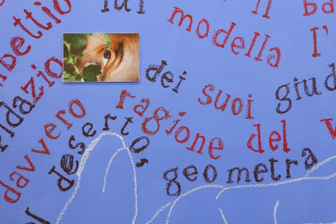 Giuseppe Caccavale. Carmi figurati. Installation view at Galleria Doppelganger, Bari 2020, dettaglio