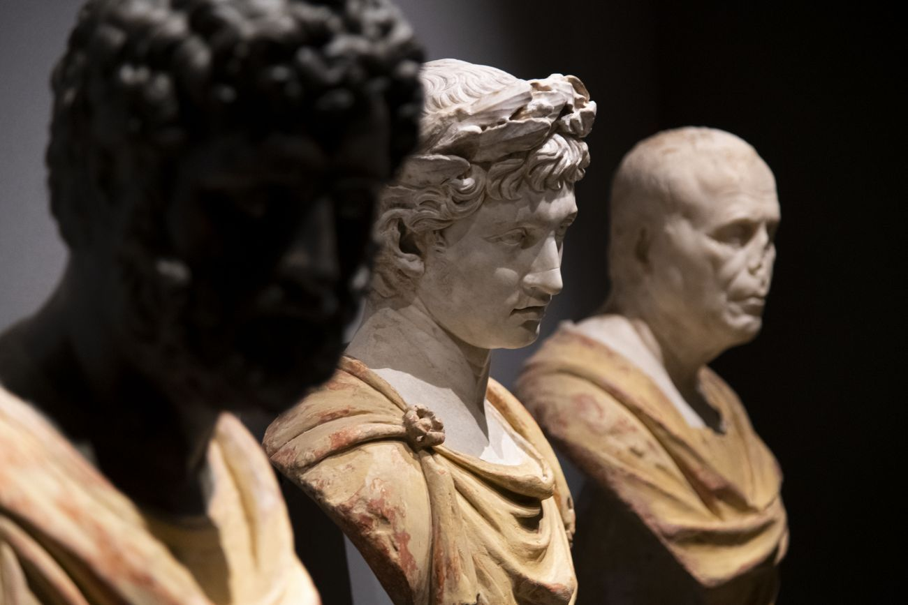 Andrea Mantegna. Rivivere l'antico, costruire il moderno. Exhibition view at Palazzo Madama, Torino 2019. Photo Perottino