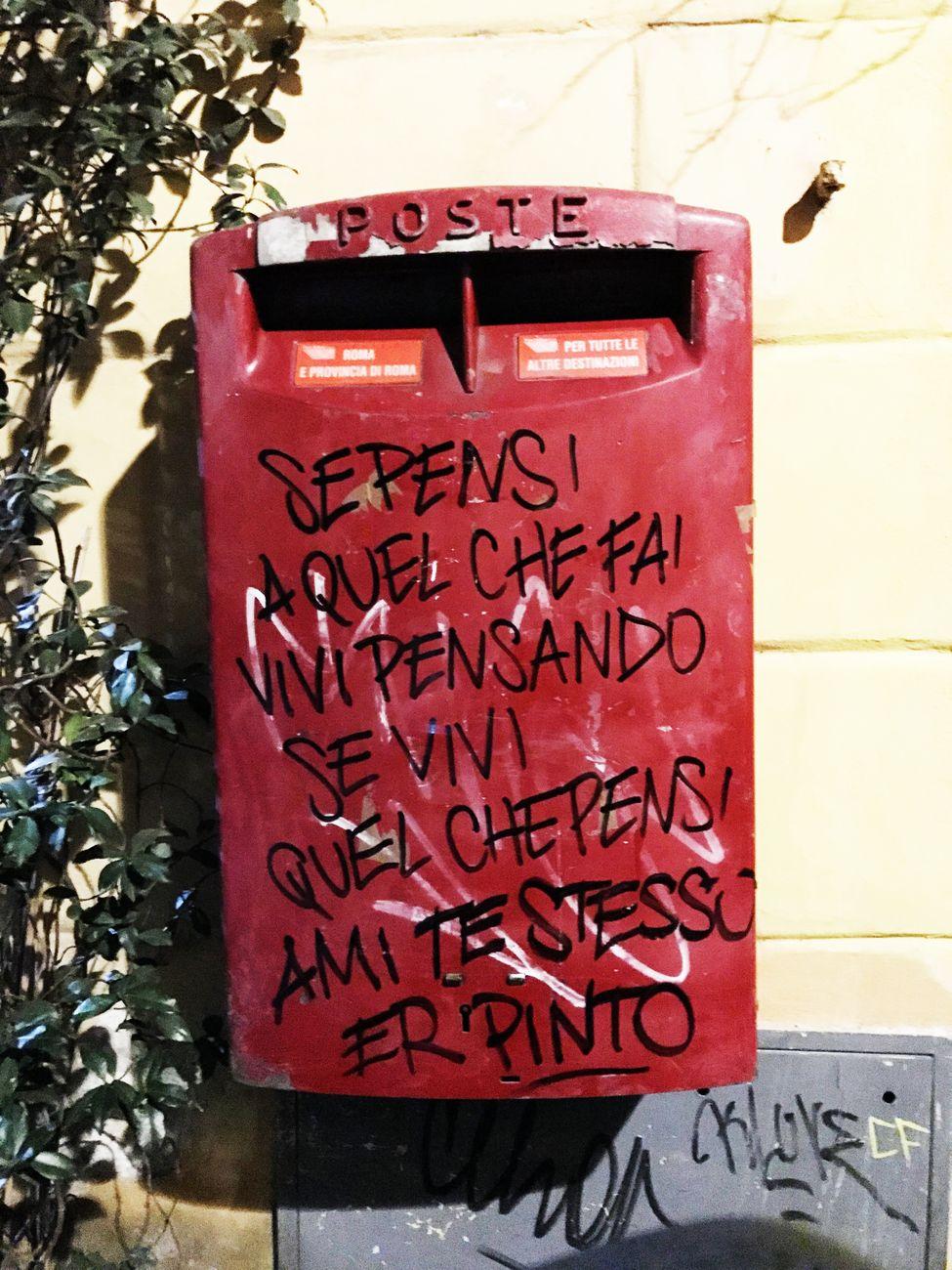 Er Pinto, Quartiere Trastevere, Roma, 2017