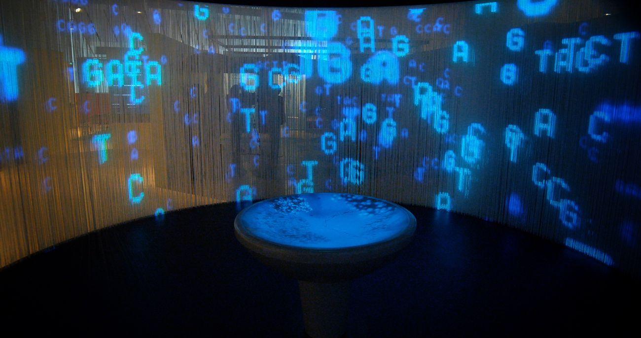 Lorenzo Greppi (progettazione e direzione dei lavori), Il genoma umano. Quello che ci rende unici, Museo delle Scienze di Trento