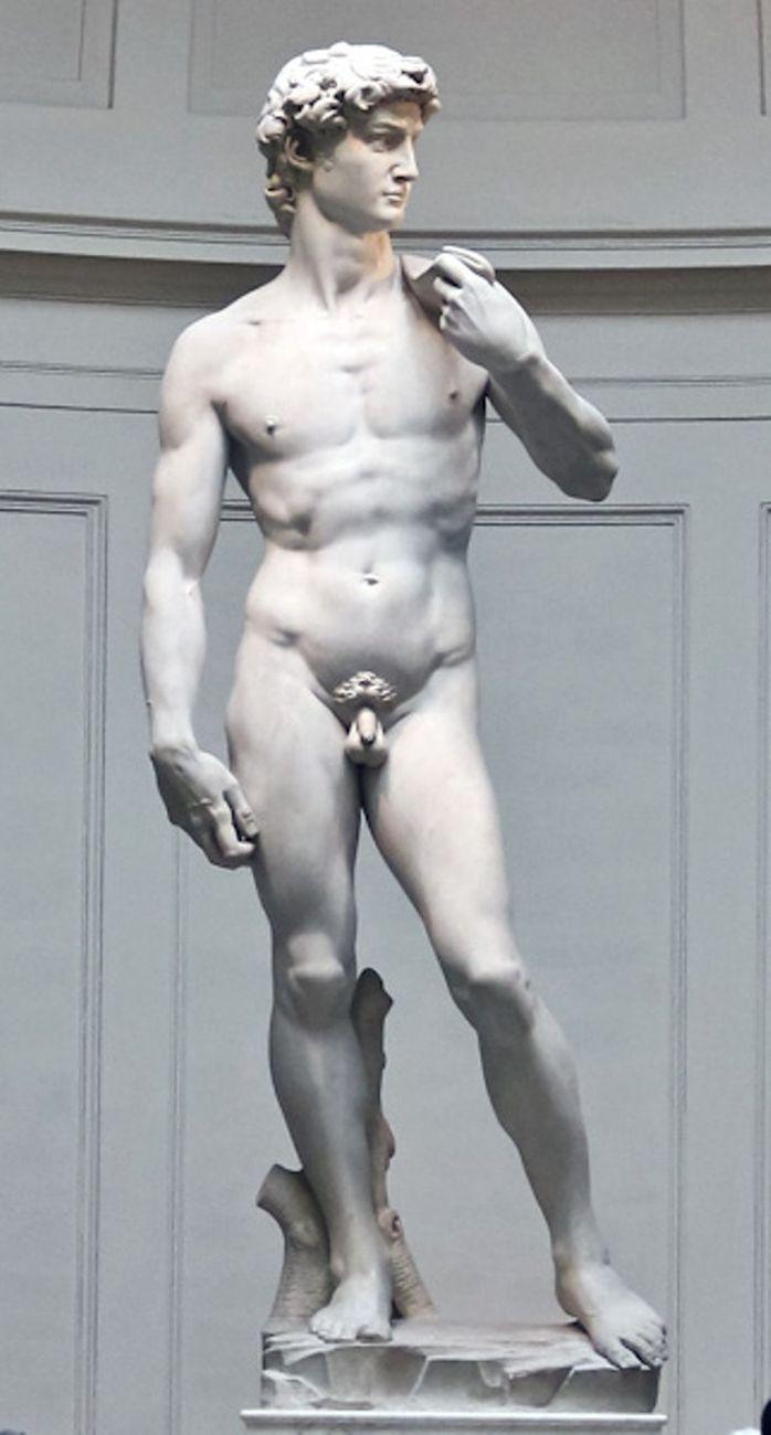 Michelangelo, David, 1501 04. Firenze, Galleria dell'Accademia