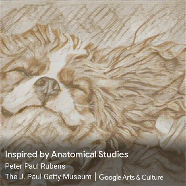 """Puppy Rubens"" con Art Transfer"