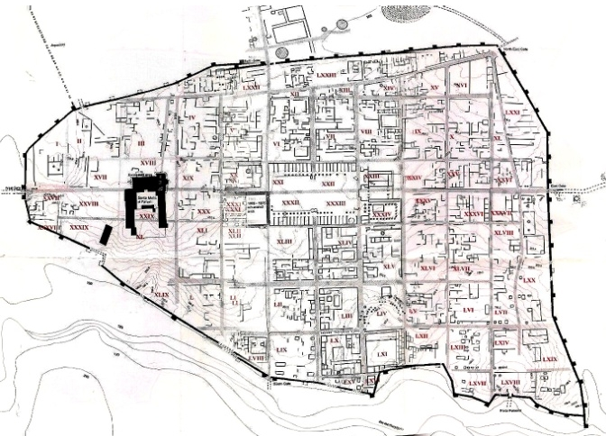 Planimetria di Falerii Novi tratto dal Dipartimento di Archeologia dell'Università di Southampton