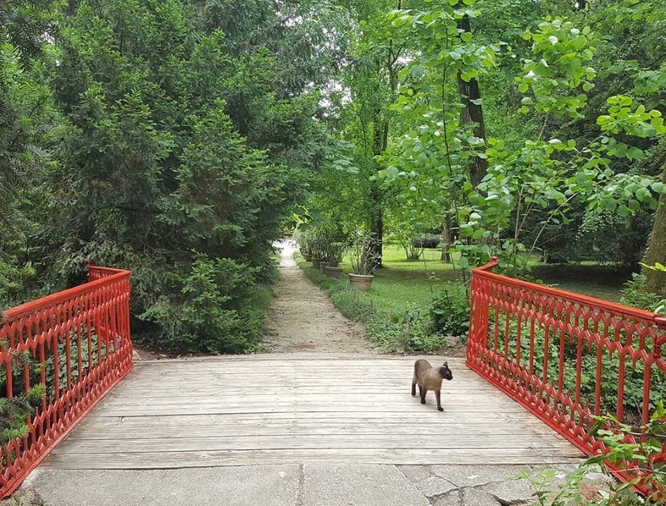 Il Parco di Villa Verdi