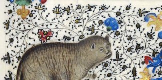 The Reason Medieval Paintings Of Cats Were So Bad