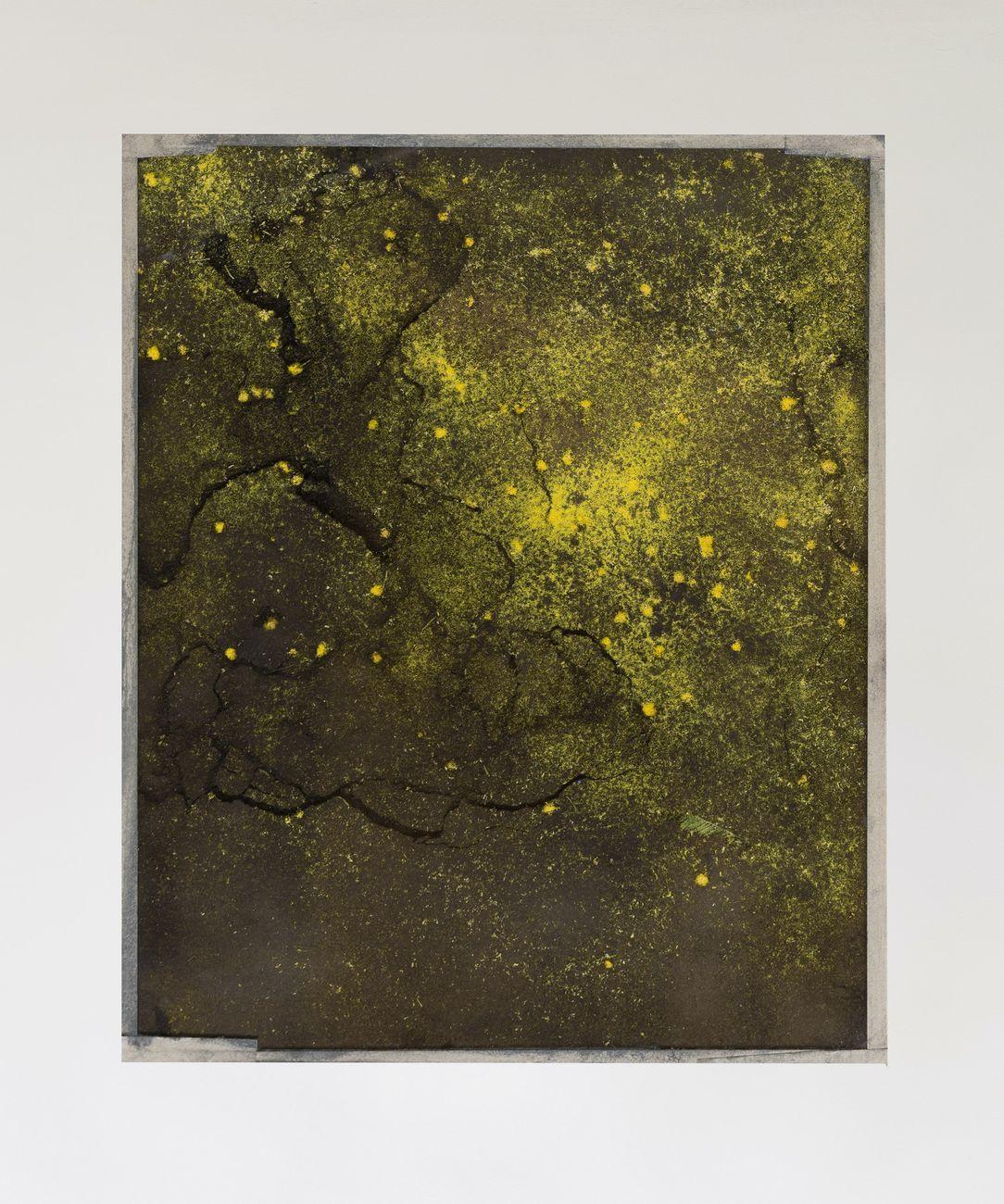 Sophie Ko, Geografia temporale. Il risveglio della terra, 2019, polline e pigmento puro, 31,5x25,5 cm. Courtesy Building Gallery, Milano