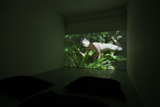 Zheng Bo, The Soft and Weak Are Companions of Life 柔弱者生之徒, 2020. Installation view with Pteridophilia 1 (2016). Video (4K, color, sound). Installation view at Kunsthalle Lissabon. Photo Bruno Lopes