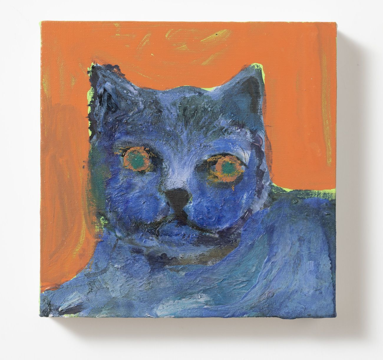 Silvia Argiolas, Blue Cat, 2020, acrilico su tela, 20x20 cm. Courtesy Galleria Richter Fine Art, Roma