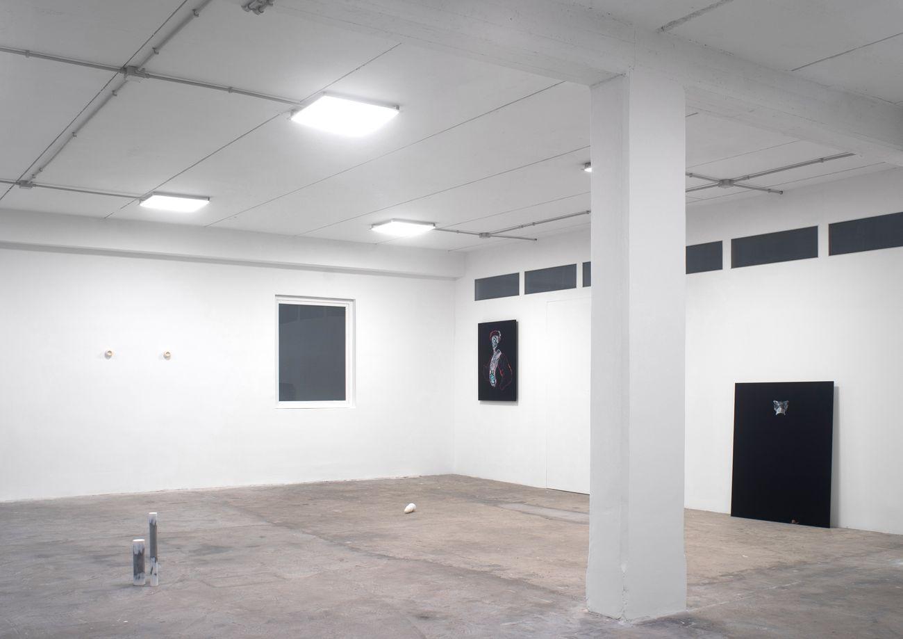 bn+ BRINANOVARA. Hadal Zone. Exhibition view at Spazio In Situ, Roma 2020. Photo Marco De Rosa