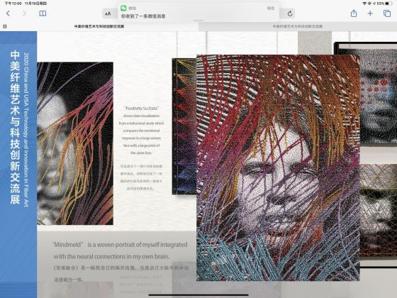 2020 USA and China Technology and Innovation in Fiber Art. Lia Cook, online exhibition display designer. Xia Minjia