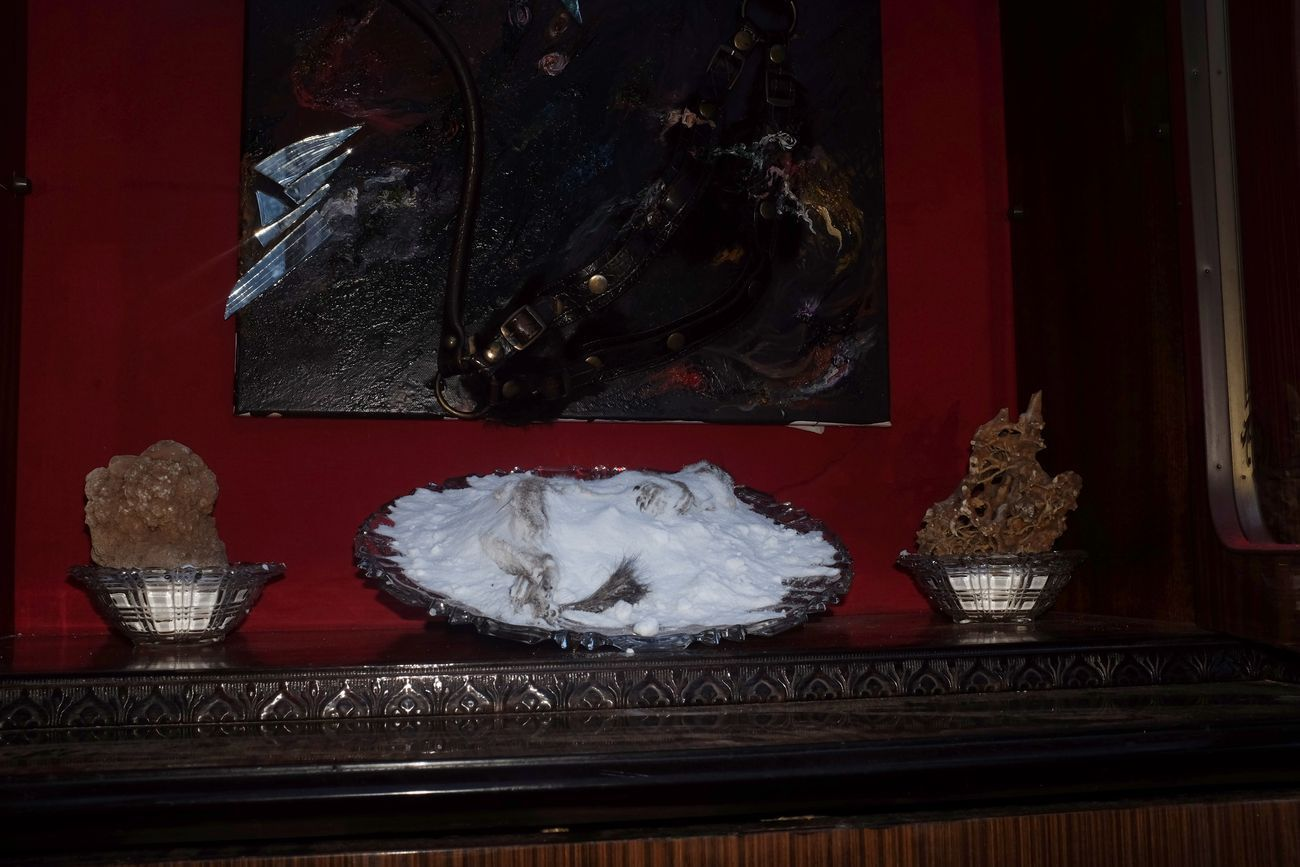mrzb, Ima's Death bed, 2020, scoiattolo, salnitro, cristallo. Courtesy gli artisti