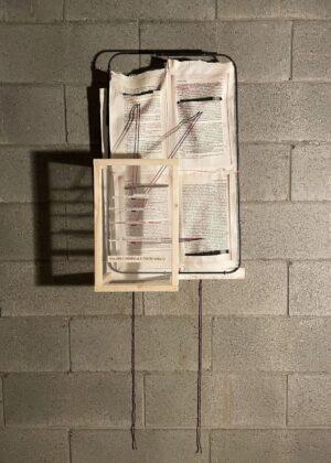 Federica Patera & Andrea Sbra Perego, Via dell'Ospedale Psichiatrico 2, 2020, stampa a caldo su tela di cotone cucita, lana, tulle, ferro, legno, cm 44x74x19cm