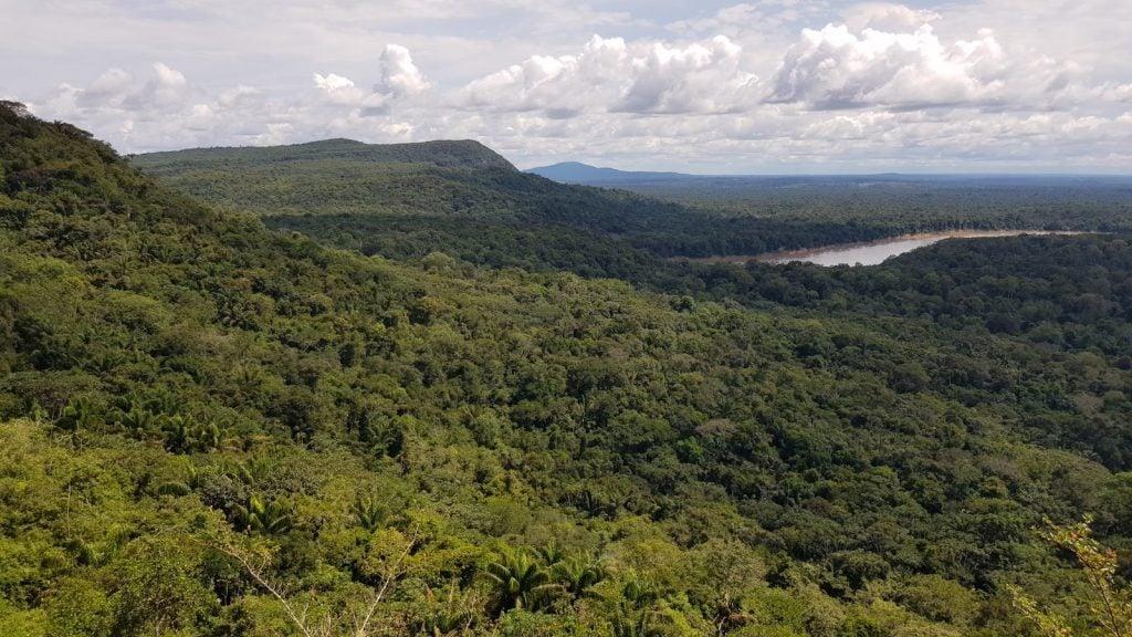 L'area del ritrovamento vista dall'alto. Photo José Iriarte