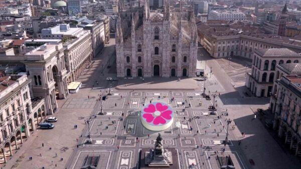 Primula, Piazza Duomo a Milano