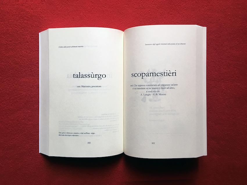 Sabrina D'Alessandro, Libro Parole Altrimenti Smarrite - talassurgo scopamestieri