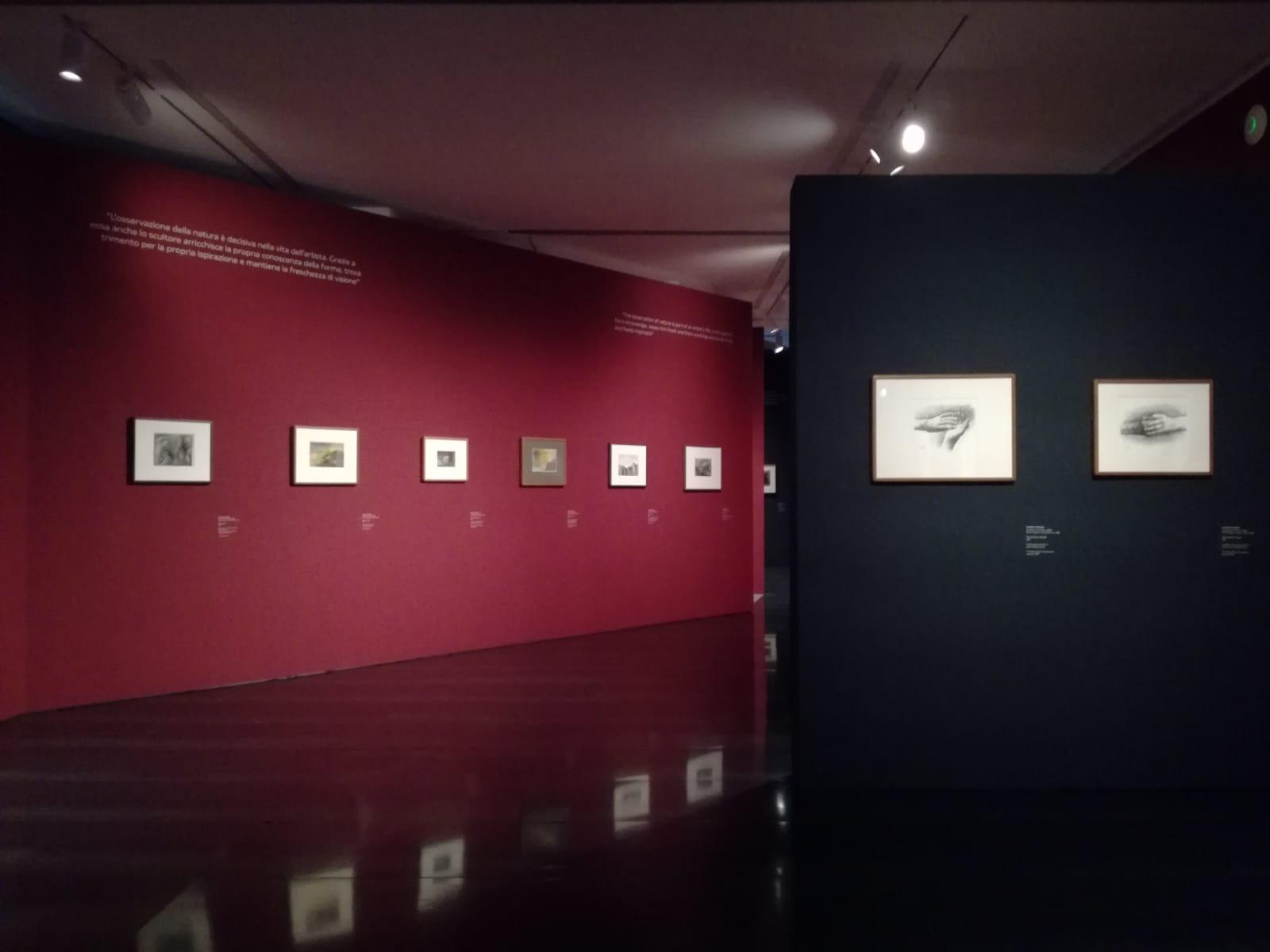 Il disegno dello scultore. Henry Moore. Museo Novecento, Firenze. ph Valentina Silvestrini