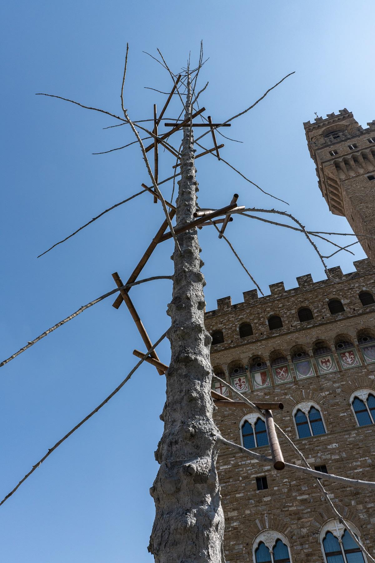 Giuseppe Penone, Abete, piazza della Signoria, Firenze © photo OKNOstudio